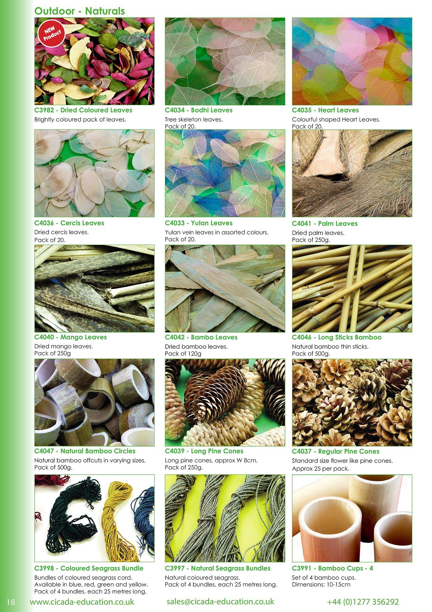 2019 - 2020 Cicada Catalogue - Flipbook - Page 18