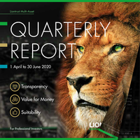 EXAMPLE PAGE - REPORT - LION'S TRUST